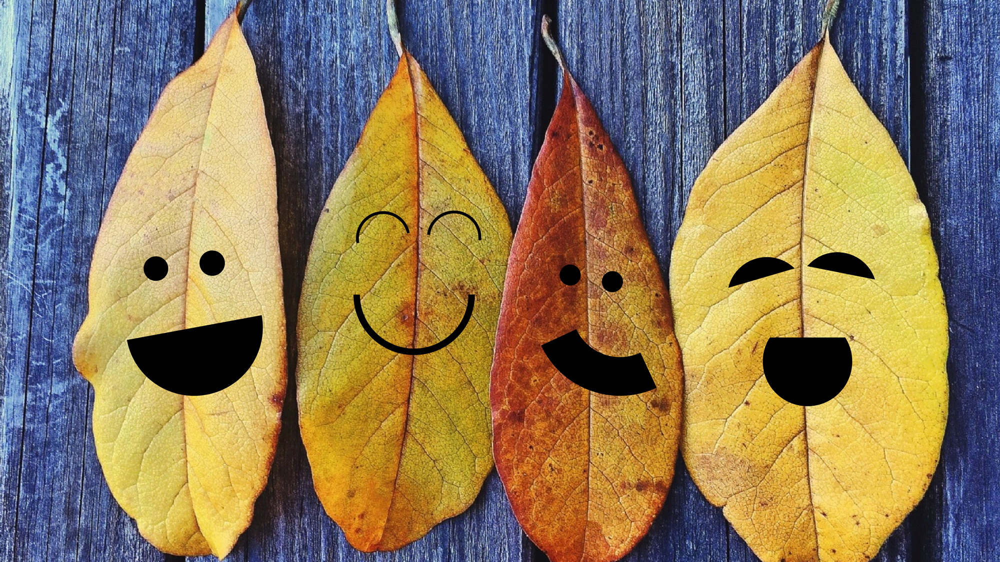 fall leaves with smiley faces
